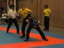 Wushu Landesmeisterschaft 2010 in Moers_6